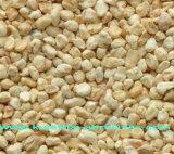 Abrasivos de pulido de la planta de la MAZORCA de maíz