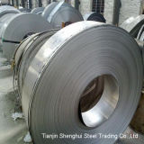 Stainless competitivo Steel (304 304L 321 316 316L)