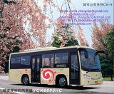 小型都市バス- C8連続