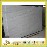 Fundos de mármore brancos de China para o projeto do banheiro