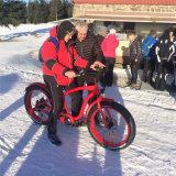26inch浜の電気バイクの電気自転車Ebike
