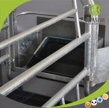 Аграрное оборудование для гальванизированных хавроньей клетей Swine порося