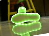 Leuchtende LED leuchten Turnschuh-Schuhen (Florida 07)