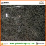 Il Brasile naturale Parodiso Green Granite per Tiles/Countertops
