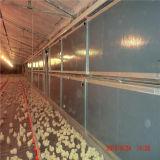 フルセットの家禽の農機具が付いているプレハブの家禽の納屋