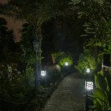 La mayoría de la luz popular del césped y del jardín