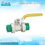 Ball d'ottone Valve con New PPR Pipe (BX-1003)