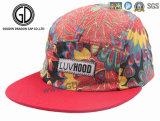 Chapeau coloré de Snapback de chapeau de campeur de Hiphot de la qualité 2016 pour des garçons et des filles