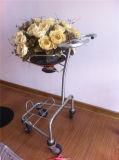 Carro de la flor, estante de visualización, soporte de visualización