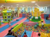 Спортивная площадка Cheap превосходного высокого качества Design крытая для Kids, Yl-Tqb027