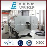 Grande caldeira de vapor despedida de venda quente do petróleo da alta qualidade da capacidade (gás)