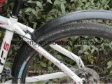 Preiswerte Fahrrad-Zubehör-Qualitäts-Fahrrad-Schutzvorrichtung