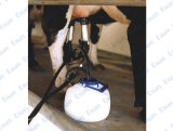 Viertelmelker des Viehbestand-8L