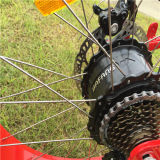 bicicleta eléctrica de la mujer de la nieve barata y cómoda de 48V