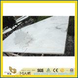 Естественное Castro White Marble для Slab, Tile, Sculpture