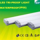IP66는 세륨 콜럼븀 증명서를 가진 LED 세 배 증거 빛을 방수 처리한다