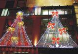 A corda feericamente do diodo emissor de luz ilumina a decoração Home do feriado