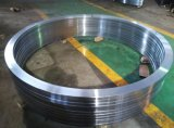 耐久のステンレス鋼はテレコミュニケーションのためのリングを造った