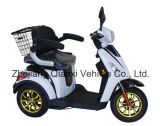 Большое Watt 3 Wheel Electric Mobility Scooter/E-Scooter с Lead Acid Battery (ST096)