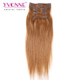Colore 30 Peruvian Straight Clip in Hair Extension