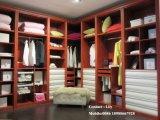 De hoge Glanzende Garderobe van de Schuifdeur (ZH0053)