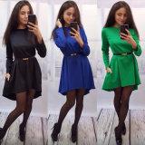 2016 langes Hülsen-reines Farben-Naht-Detail-spätestes Entwurfs-Frauen-Form-Kittel-Kleid
