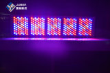 Switchable Veg Bloom 320 * 5W 1600W LED Grow Light Espectro completo
