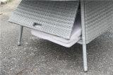 Cadeira Stackable do Rattan ao ar livre e tabela grande do vime de Kd do jardim
