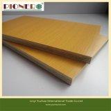 Plein Eucalyptus Core Mélamine contreplaqué pour meubles