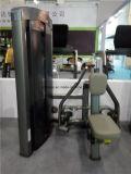 Fila asentada equipo de la gimnasia de los deportes (XH909)