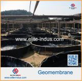 Color nero HDPE Geomembrane per Pond Liner