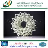 articolo veloce su ordine della plastica di Prototyping di stampa 3D