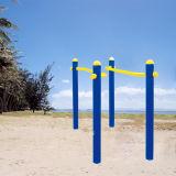 Aptitud Equipo estándar Excersize vertical del balancín al aire libre