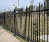 Ornamento da cerca e da porta do ferro de molde