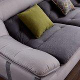 جديدة تصميم منزل أثاث لازم حديثة بناء أريكة ([فب1137])