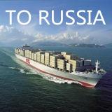 Transporte, frete de mar, oceano, LCL, FCL de Shanghai China para trocar a porta comercial Vladivostok dos peixes, Rússia