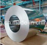 Chapa de aço galvanizada revestida cor de PPGI PPGL na bobina