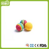 O gato brinca esferas de tênis pequenas