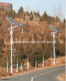 5m LED Solarim freienbeleuchtung mit 30W LED Lampe