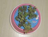 장식적인 대나무 섬유 화분 (BC-FP1032)