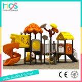 Plastic Dia's van de Apparatuur van de Speelplaats van het Spel van jonge geitjes de Vastgestelde Openlucht (HS07401)
