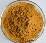 Extrait de la meilleure qualité de mycéliums de la qualité 50% Cordycepin Cordyceps