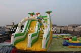 Nouveautés gonflables Bouncy Slides Toys for Amusement Park