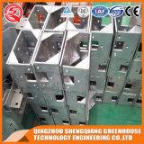 Landwirtschafts-heißes galvanisiertes Stahlrahmen PC Blatt-Gewächshaus für Verkauf