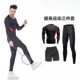 Подгонянный Sportswear Wicking влаги гимнастики цвета Breathable для человека