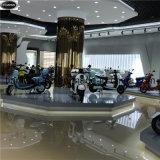 """Motocicleta elétrica barata de China com o motor traseiro de 48V 350W, E-""""trotinette"""""""