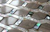 Пресноводная мозаика раковины & мрамора