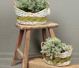 (BC-WF1029) Eco-Friendly Handmade 자연적인 버드나무 꽃 바구니