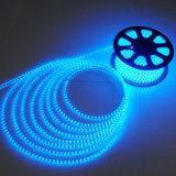 SMD5050 Bule/verde/indicatore luminoso rosso della corda del LED