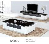 Muebles de la sala de estar del estilo de Europa fijados (A610)